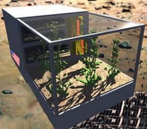 Izgled modela kontejnera – zelene oaze za Odyssey Moon