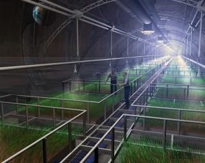 Možda će ovako izgledati zeleni vrt na Mjesecu